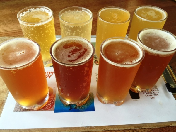 Ruddy Duck sampler