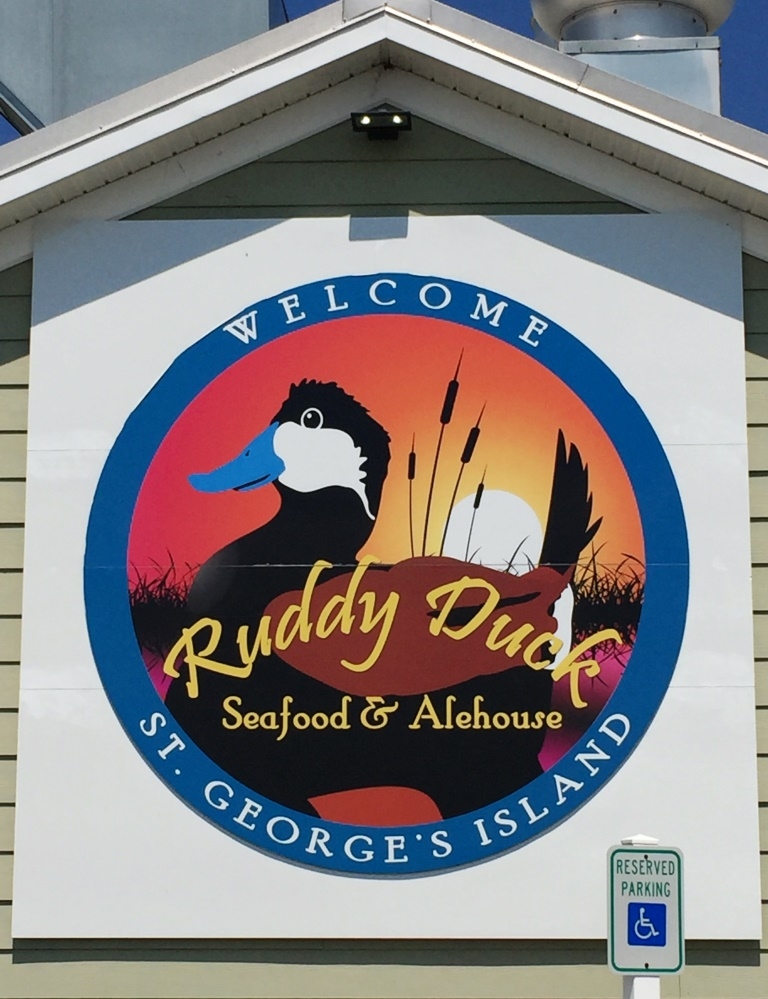 Ruddy Duck sign