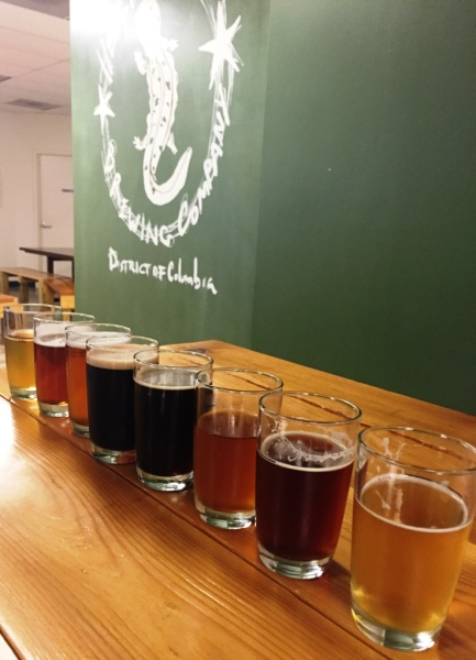 Hellbender flight